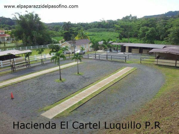 Hacienda El Cartel