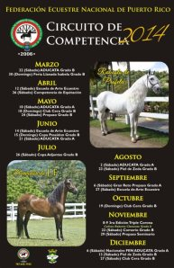 Competencias 2014 Trujillo Alto